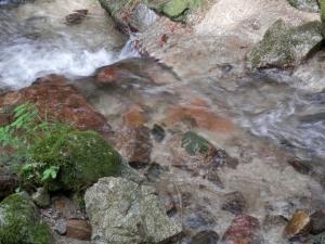 生きた水、波動の高い水